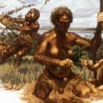 Un gruppo di australopitechi