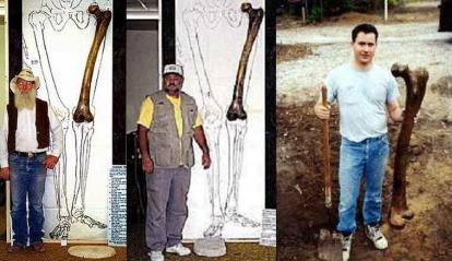 Il femore del Mt. Blanco Fossil Museum in Texas e il presunto ritrovamento
