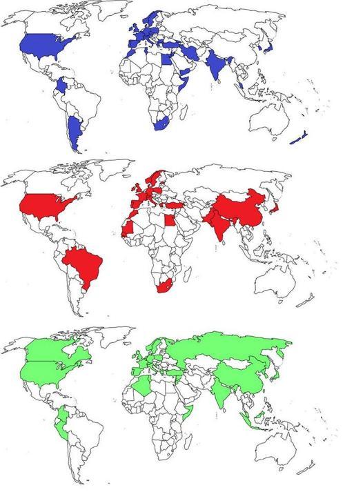 Le strutture megalitiche in giro per il mondo: in blu i menhir, in rosso i circoli di pietre, in verde i dolmen